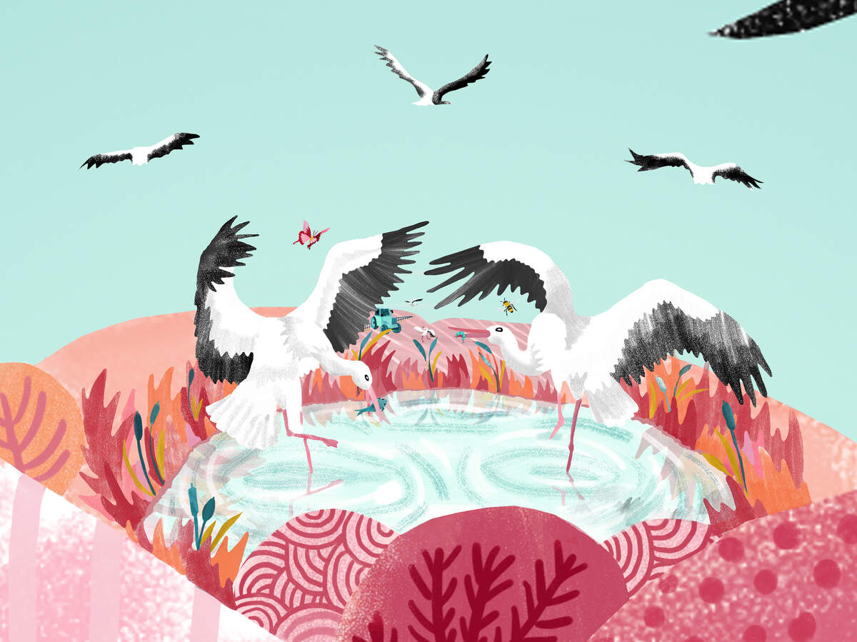 """A Stork's Story"" is a graphic novel produced by Benjamin Dix from PositiveNegatives and with illustrations by comic creator Karrie Fransman. Image courtesy of Karrie Fransman."